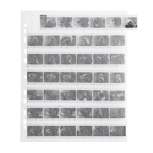 FOTOIMPEX Negative Pages, Paper, 35mm 7 Stripes, Single Sheets